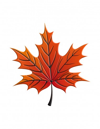 Maple leaf (Free Template For a 3D Pen)