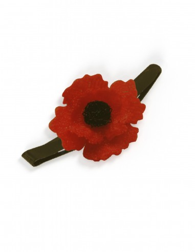 Poppy. The symbol of Remembrance Day...